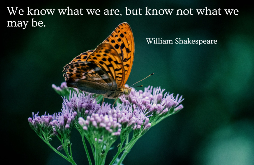 Quote- We know what we are, but not what we may be. William Shakespeare