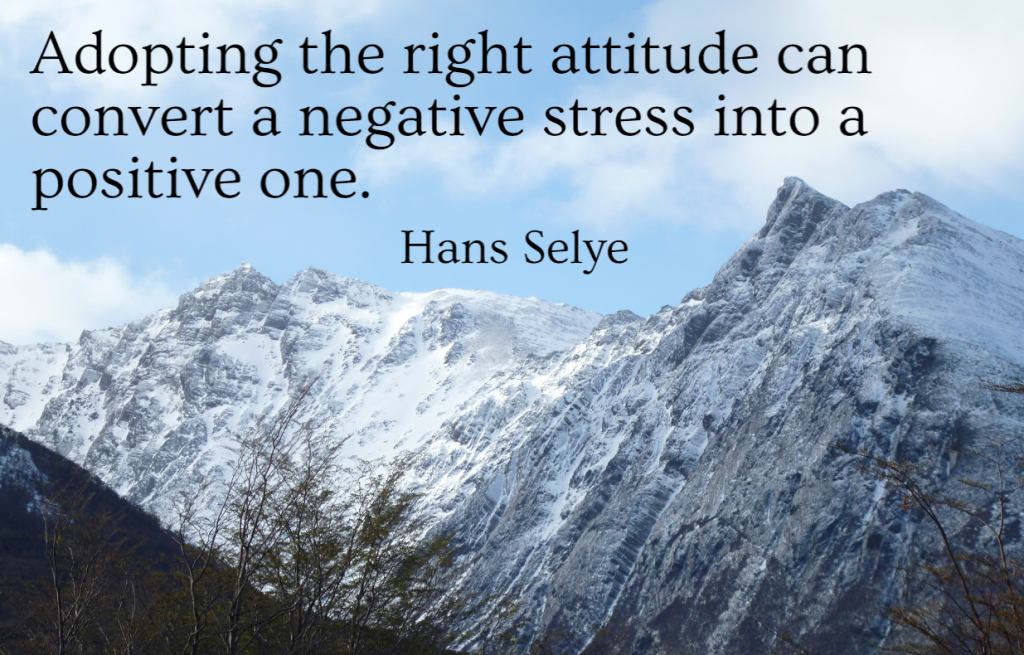 Quote- Adopting the right attitude can convert a negative stress into a positive one. Hans Selye