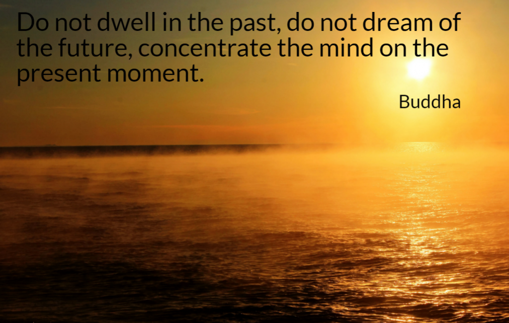 Quote- Do not dwell in the past, do not dream of the future, concentrate the mind on the present moment. Buddha