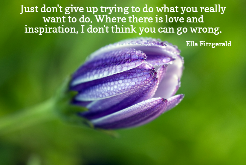 Quote- Just don't give up trying to do what you really want to do. Where there is love and inspiration, I don't think you can go wrong. Eliza Fitzgerald