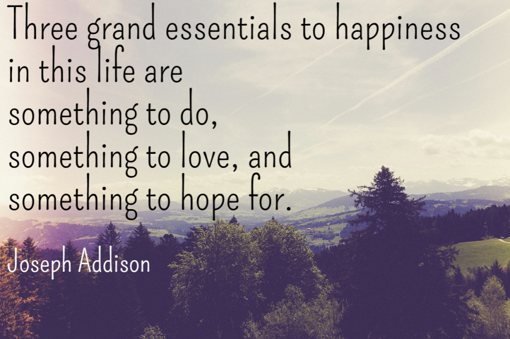 Quote- Three grand essentials to happiness in this life are something to do, something to love, and something to hope for. Joseph Addison
