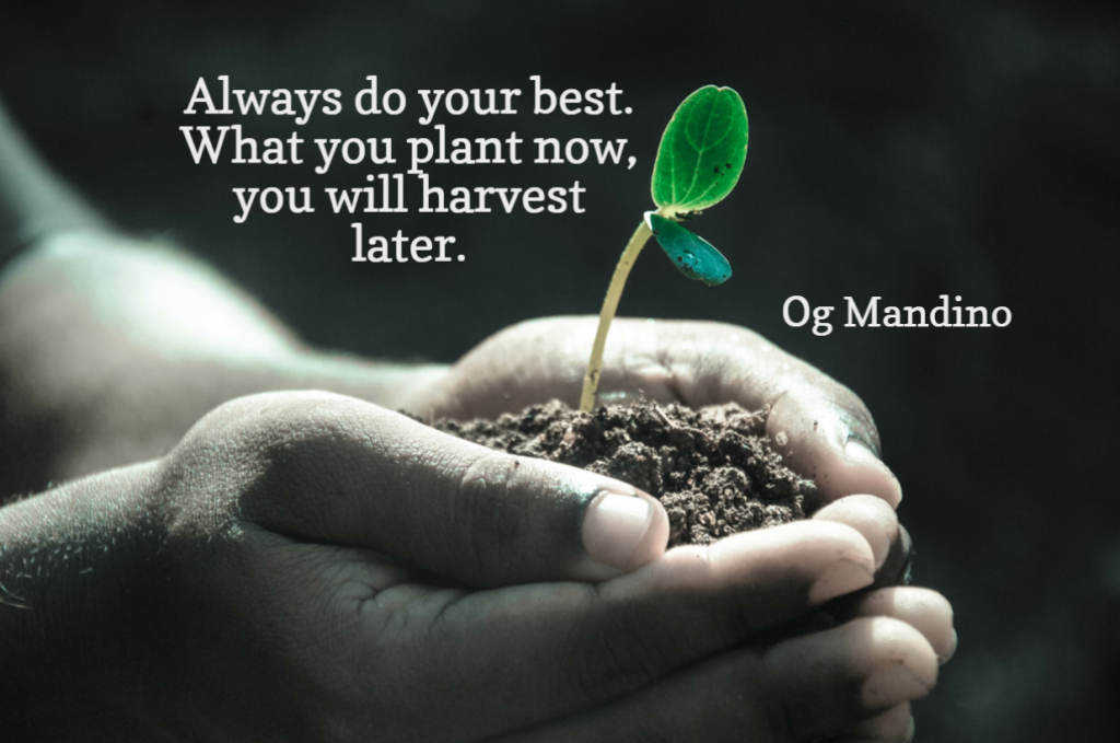Quote- Always do your best. What you plant now, you will harvest later. Og Mandino