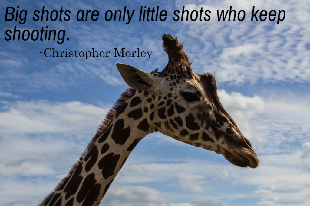 Quote- Big shots are only little shots who keep shooting. Christopher Morley